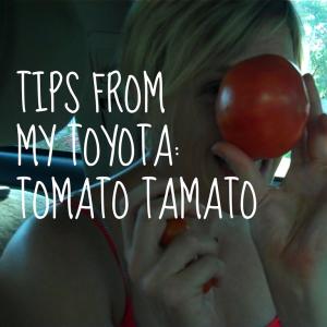 tomatotips copy