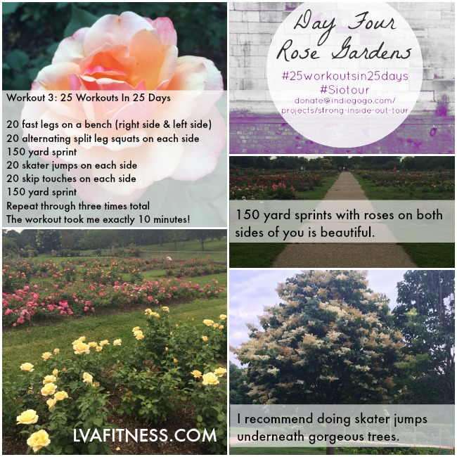 day four rose gardens workout