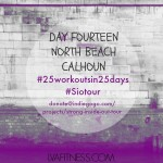 Day Fourteen North Beach Lake Calhoun: 25 Workouts In 25 Days