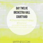 Day Twelve Orchestra Hall: 25 Workouts In 25 Days